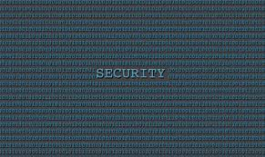 Citizen Developers and Cyber Security Risks